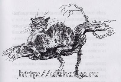 Тамара Крюкова и книга Кот на счастье