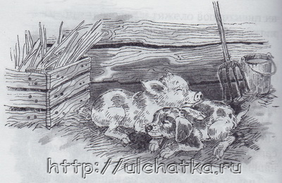 Книга Охотничья избушка Красильников Николай