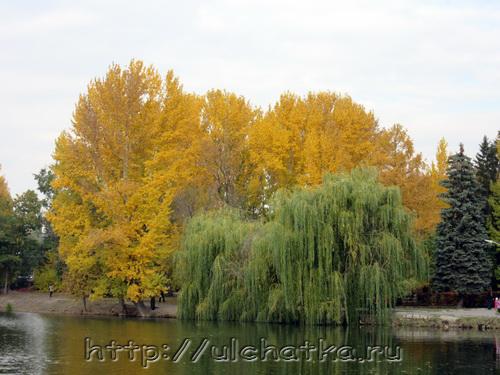 Стихи золотая осень
